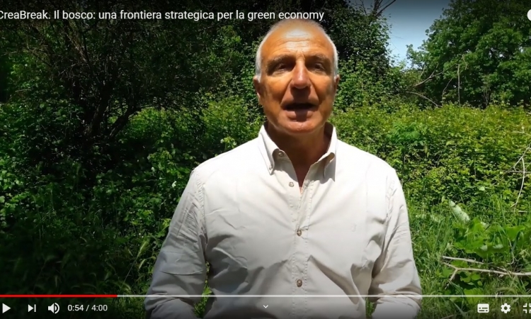 "Video: ""Il bosco: una frontiera strategica per la green economy"""