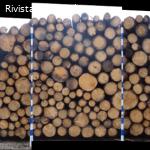 Vendita pubblica di legname - Agenzia prov.le foreste dem.