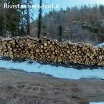 Vendita pubblica di legname - Asuc di Lona