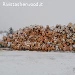 Vendita pubblica di legname - Comune di Ville di Fiemme