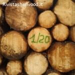 Vendita pubblica di legname -  Provincia di Trento
